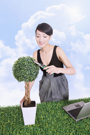 potted plant: Woman pruning potted plant