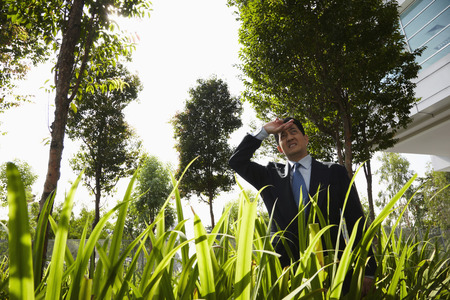 one mature man only: Businessman standing among grass outdoors, shielding his eyes LANG_EVOIMAGES