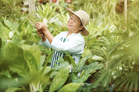 tending: Cheerful woman tending to garden