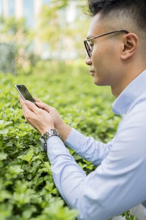 Man taking picture of plants with mobile phone 免版税图像