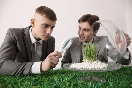 french ethnicity: Man looking at grass seedling under magnifying glass Stock Photo