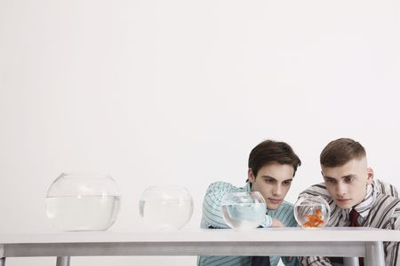 Two men looking at goldfishes in the smallest fish bowl photo