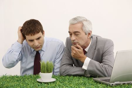 bulgarian ethnicity: Businessmen looking at cup of grasses