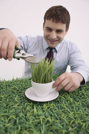 bulgarian ethnicity: Businessman trimming grasses on cup