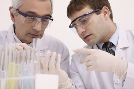 Scientists examining specimen on petri dish Stock Photo - 6581144