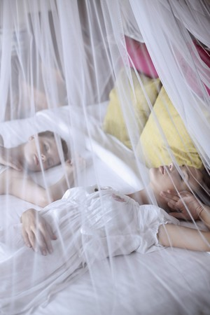 Women sleeping under mosquito netting photo