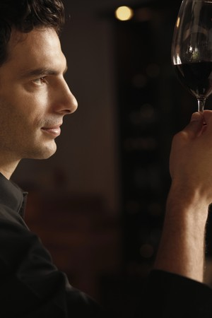 Man inspecting a glass of red wine Stock Photo - 7359197