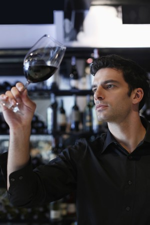 Man inspecting a glass of red wine Stock Photo - 7594876