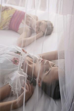 Women sleeping under mosquito netting photo