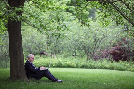 Businessman using laptop under a tree photo