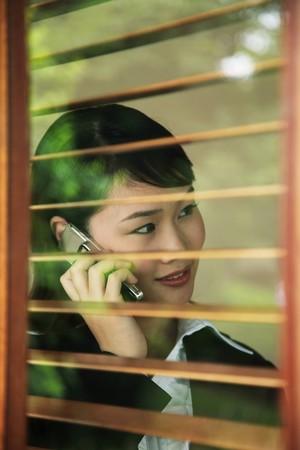 Businesswoman talking on the phone Stock Photo - 7839370