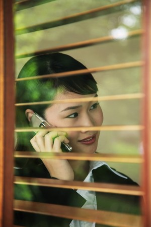 Businesswoman talking on the phone Stock Photo - 7839370