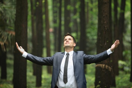 Businessman standing with arms outstretched in forest Stock Photo - 8148896