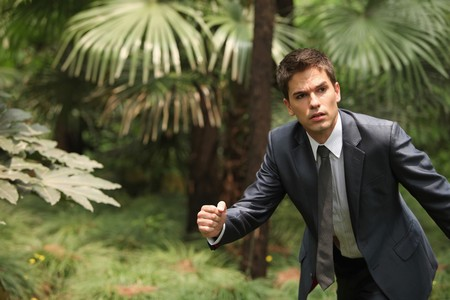 Businessman in the forest Stock Photo - 8148416