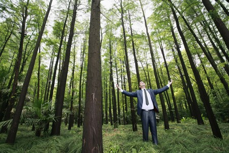 Businessman standing with arms outstretched in forest Stock Photo - 8149501