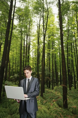 south western european descent: Businessman using laptop in the forest