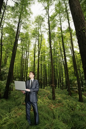 Businessman using laptop in the forest Stock Photo - 8149468