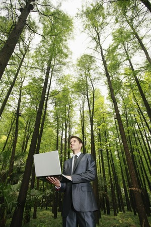 Businessman using laptop in the forest Stock Photo - 8149487