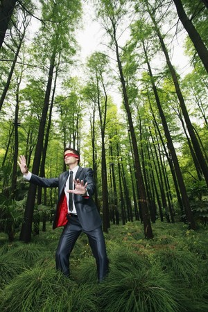 Businessman with blindfold walking aimlessly in the forest Stock Photo - 8149474