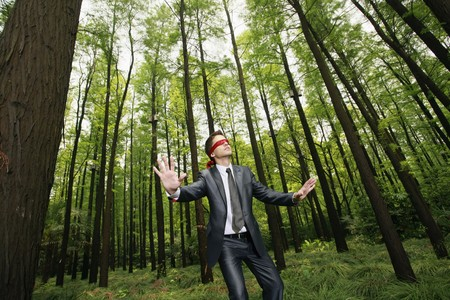 Businessman with blindfold walking aimlessly in the forest Stock Photo - 8149473