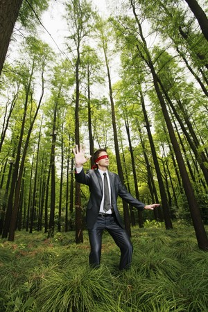 Businessman with blindfold walking aimlessly in the forest Stock Photo - 8149499