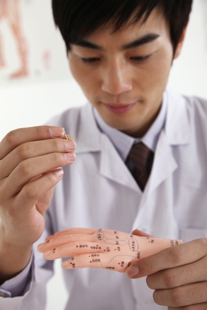 anatomical model: Man practising acupuncture on anatomical model Stock Photo