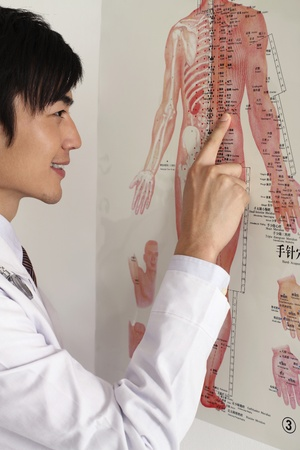 Man pointing at medical diagram Stock Photo - 8260640