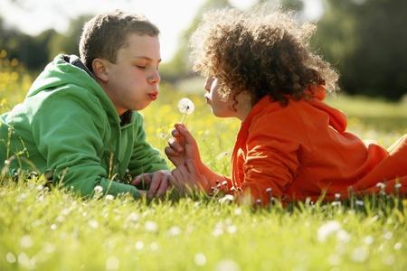 blowing dandelion: Two boys lying on the grass blowing dandelion