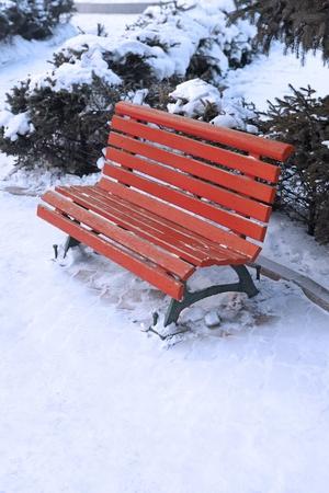 bench park: Banco del Parque durante el invierno