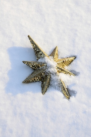 topper: Star shaped tree topper in snow