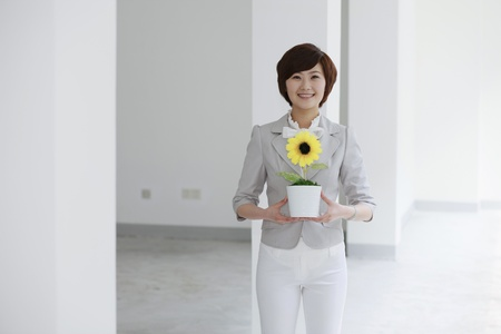 Businesswoman holding potted sunflower plant photo