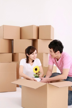 Man and woman packing potted plant into cardboard box photo