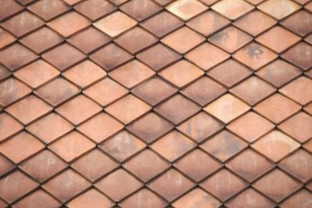 neatly: Neatly arranged tiles
