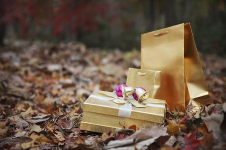 Gift box and paperbags Stock Photo