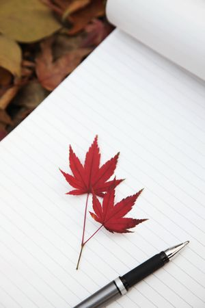 Maple leaves and pen on notepad Stock Photo - 6513529