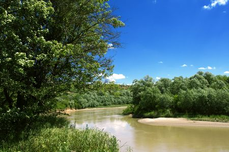 kuban: Forests on banks of Russian Kuban river Stock Photo