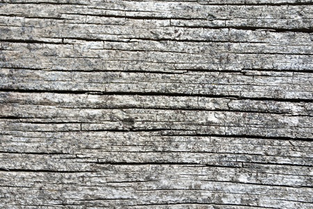 오래된 나무 질감