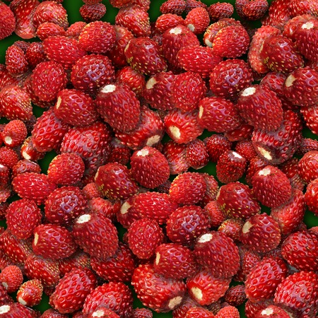 Wood wild strawberry. It is combined from several layers. Stock Photo - 1684065