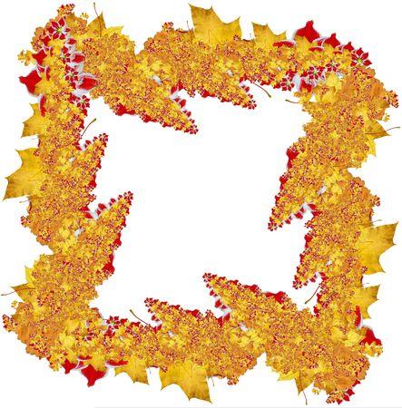 Yellow maple, red flowers frame. Autumn theme Stock Photo - 2052682