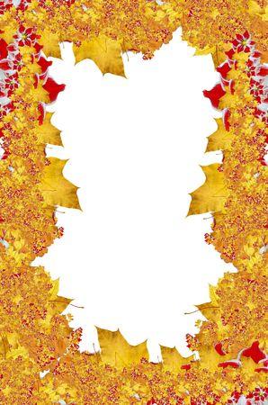 Yellow maple, red flowers frame. Autumn theme Stock Photo - 2052679