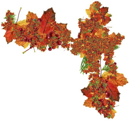 Maple leaves, needles, red balls - winter and autumn registration of cards. Big size. Stock Photo - 2052670
