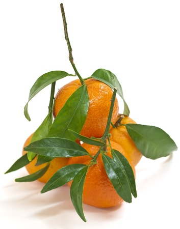 Juicy tangerines just out of the box. Soft orange shadow Stock Photo - 8288092