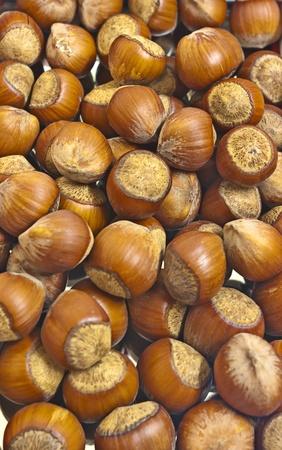 bonkers: large dark hazelnuts. Background for food poster