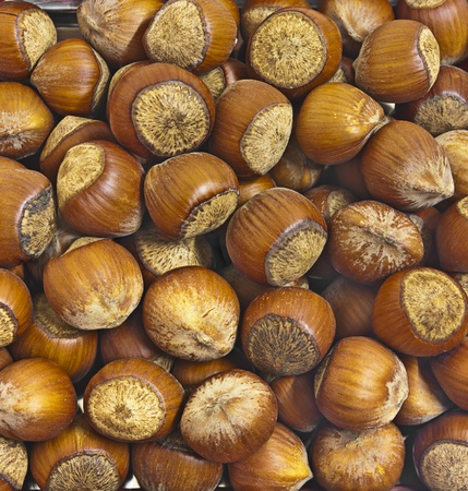 large dark hazelnuts. Background for food poster photo