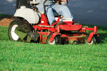 mowing grass: mowing the lawn Stock Photo