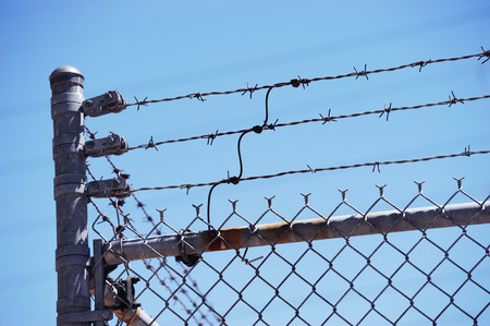 barbed wire: barbed wire fence Stock Photo