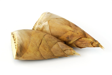 winter bamboo shoot isolated on white background