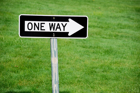 one way sign: one way sign against green lawn