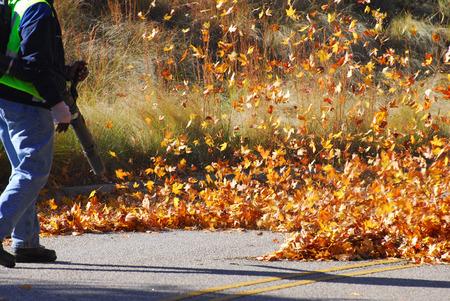 야외 육체 노동자는 가을 송풍기에 의해 도로에 낙엽을 청소 스톡 콘텐츠