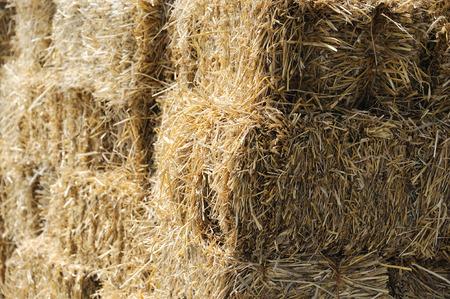 bales: stack hay bales Stock Photo